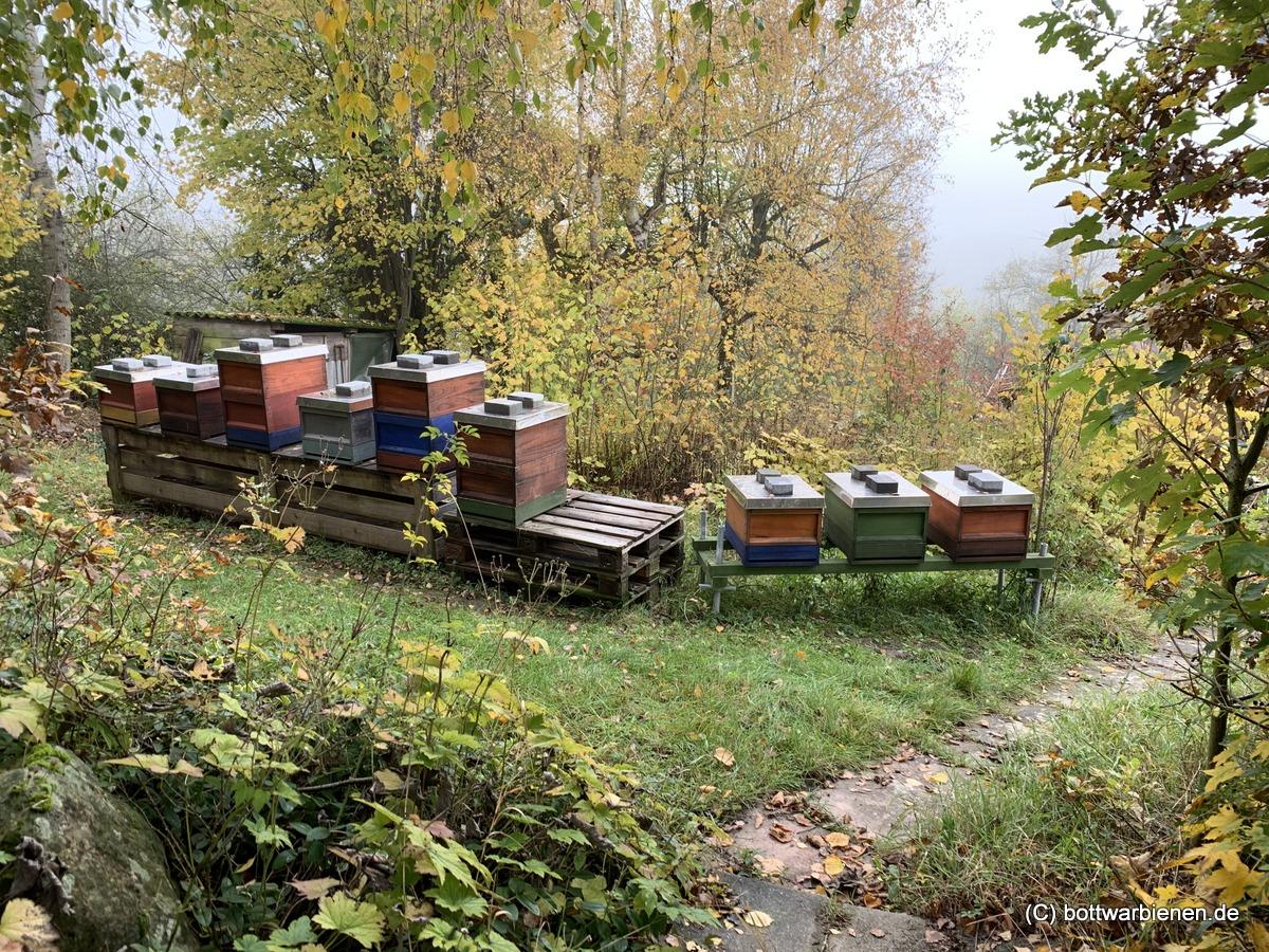 Feierabend am Bienenstand für 2019